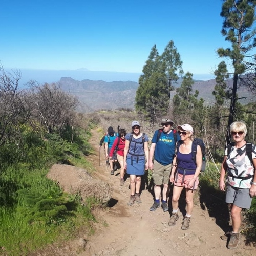 Starting the day -guided walking in Gran Canaria