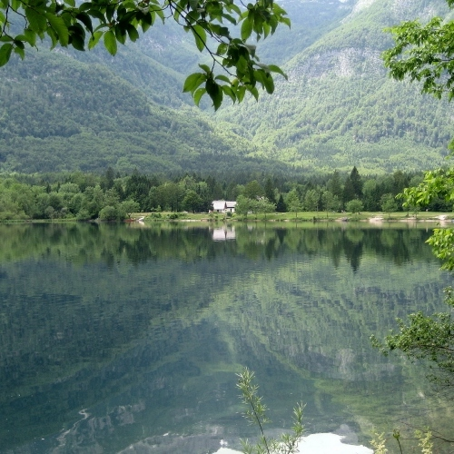 Guided walking Slovenia Lake Bohinj