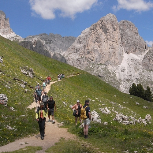 Guided walking -Group walking a Dolomites valley