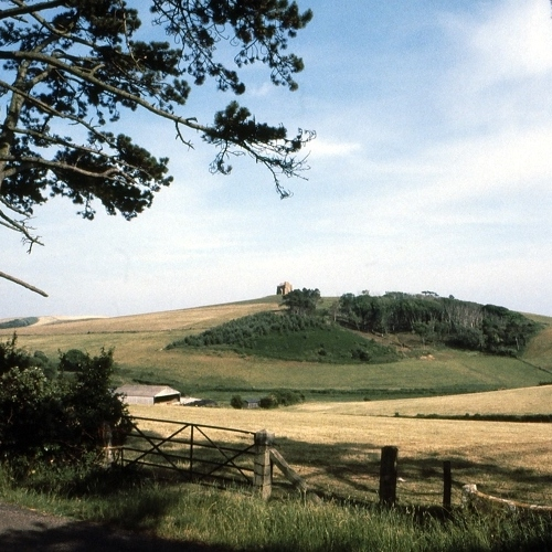 Guided walking in Dorset - a pastoral scene