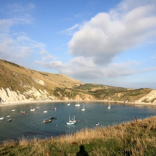 Guided walking in Dorset Lulworth Cove