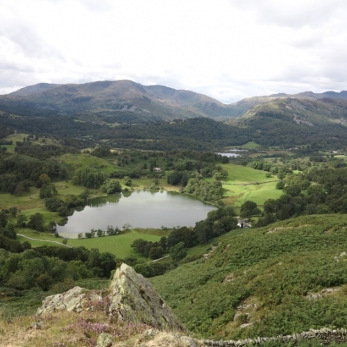 Gudied walking holidays in the Lake District Tarn