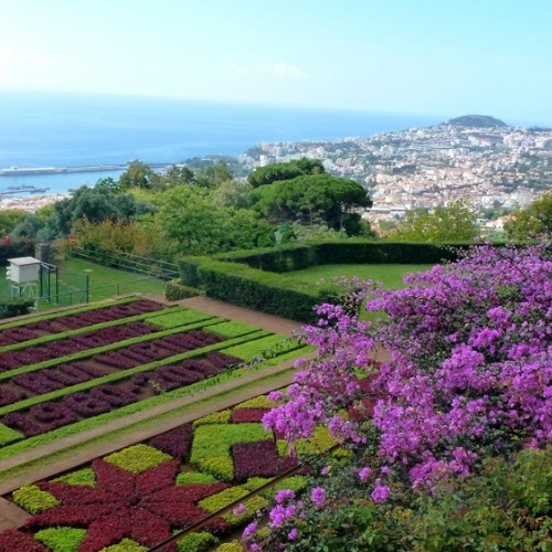 Guided walking in Madeira - the botanical gardens