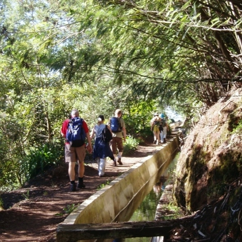 Guided walking in Madeira - a stroll along the levada near Monte