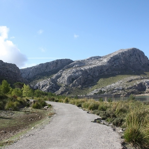 Guided walking in Majorca- near Cuber reservoir