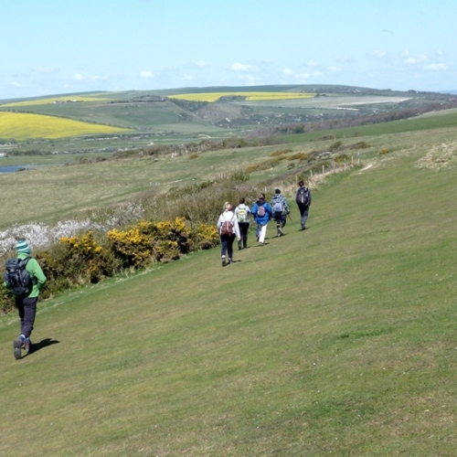 South Downs - lovely moorland walk